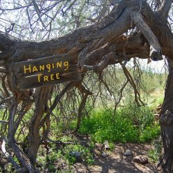 The Malifaux Hanging Tree